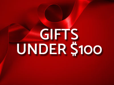 2017 Holiday Gift ideas under $100. Shop Now.